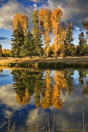 Reflections, Snake River