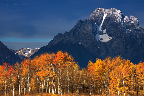 Fall at Mt Moran II